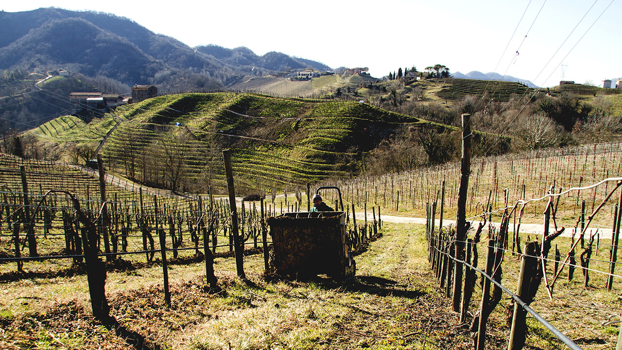 A good Prosecco Superiore D.O.C.G. comes from a quality ground