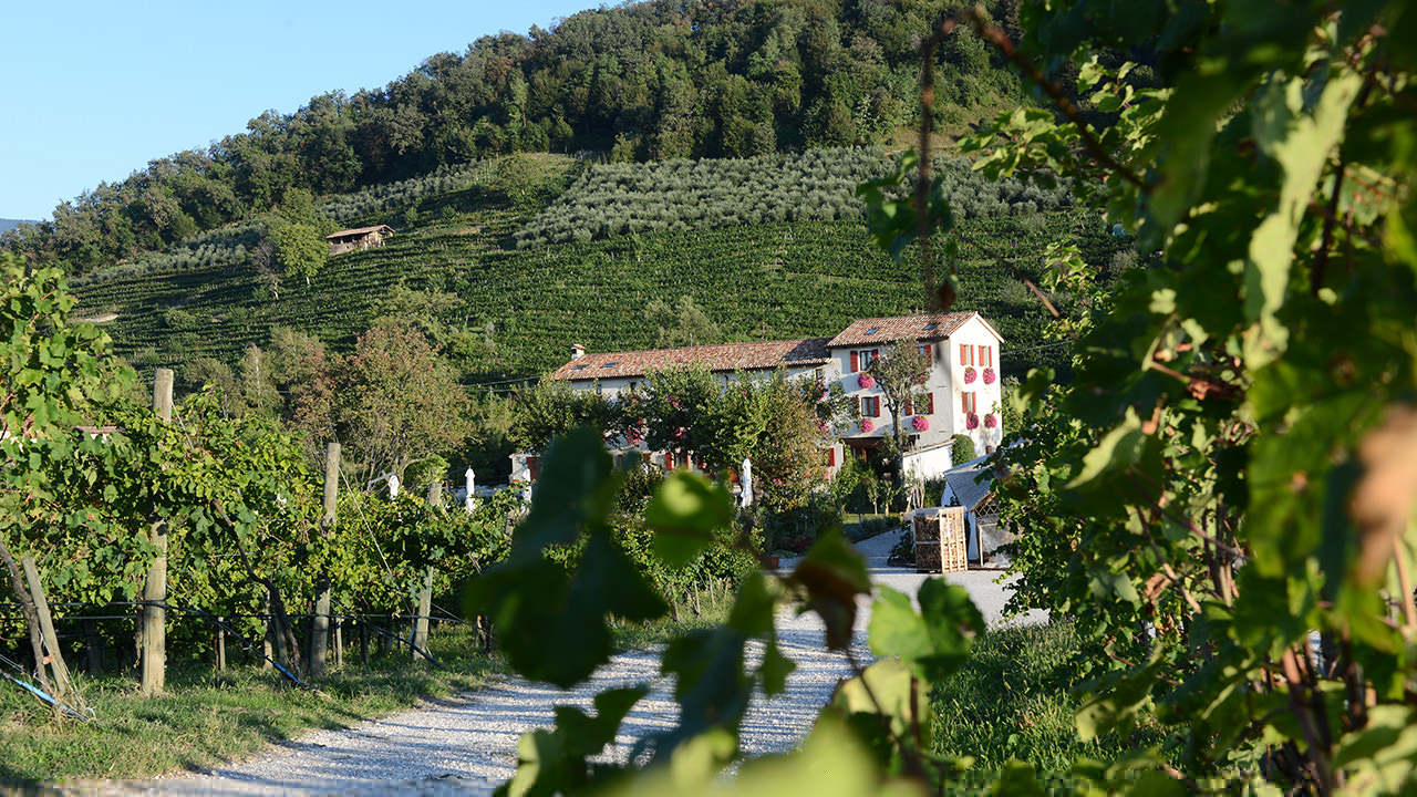 The historical building in the countryside, home to the winery and the Relais.